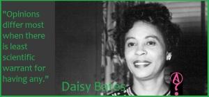 Daisy Bates: Civil Rights Crusader from Arkansas essay